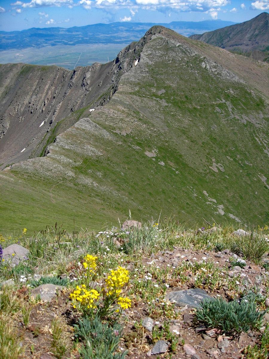 Spring Mountain - 13,244
