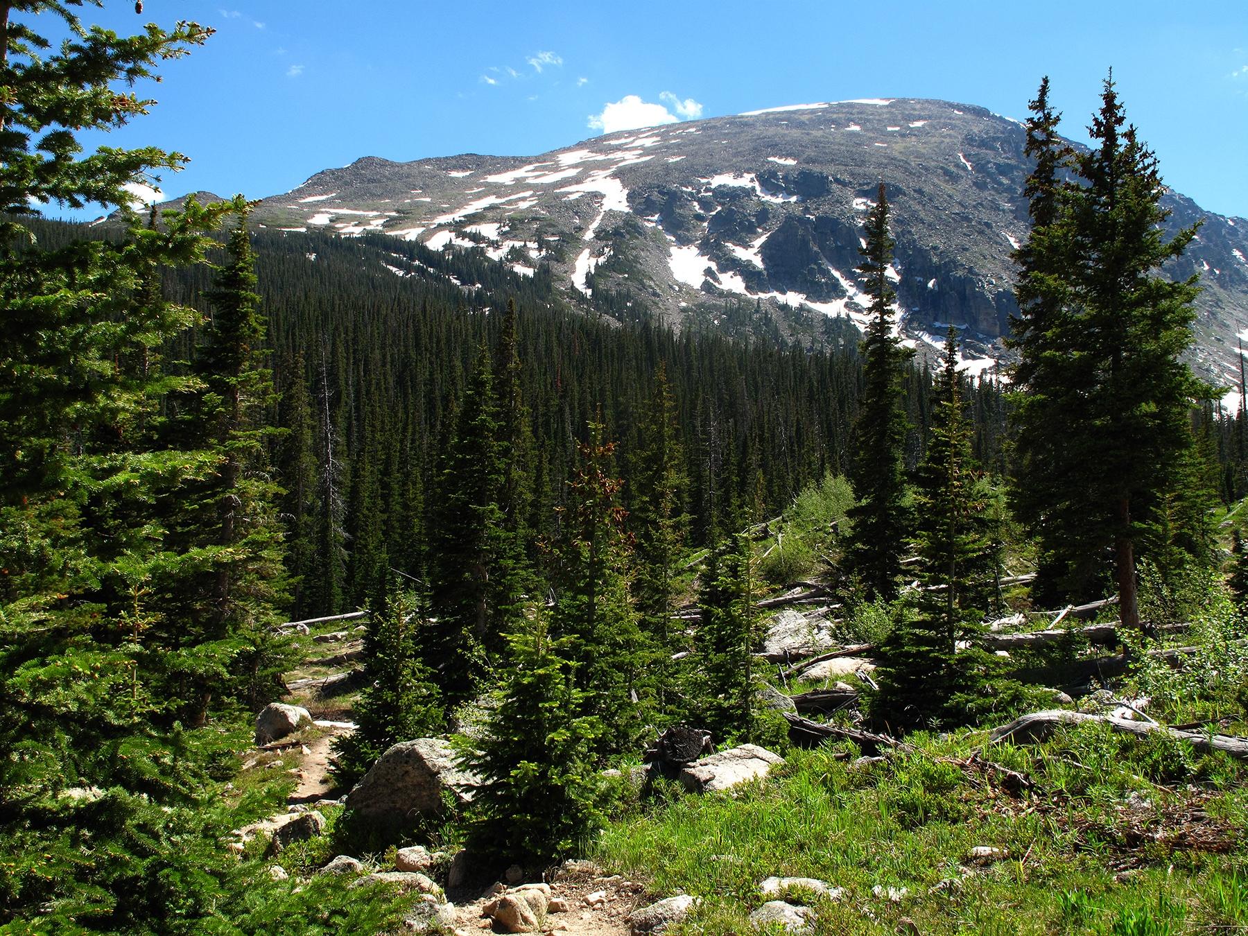 Copeland Mountain - 13,176