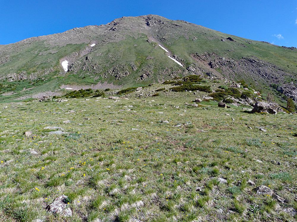Horn Peak from Dry lakes Mack